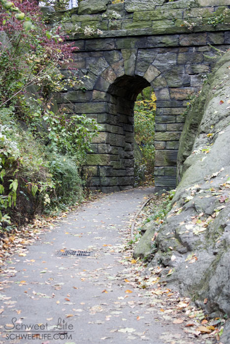 Central Park Ramble Stone Arch