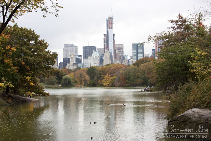 Central Park The Lake 007