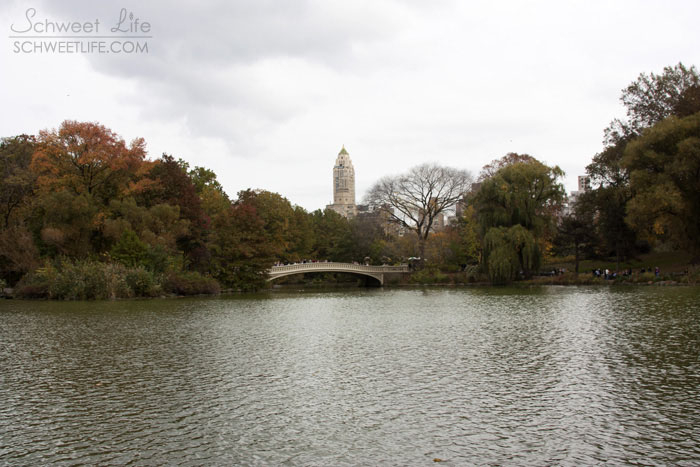 Central Park The Lake & Bow Bridge