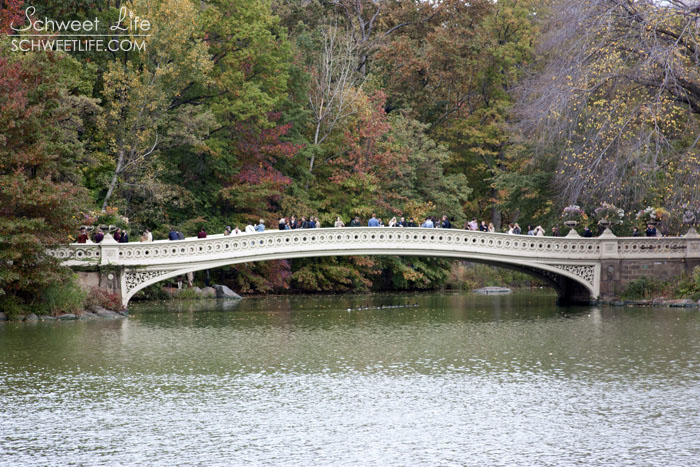 Central Park Bow Bridge on The Lake