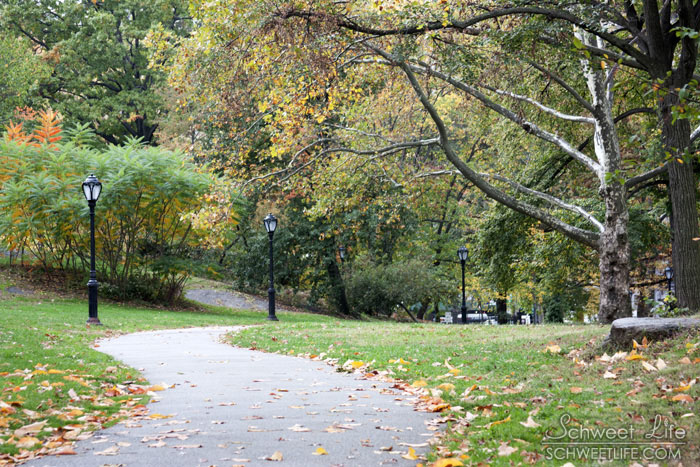 Central Park Path 020